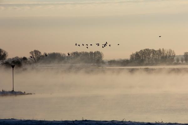Mist in de lucht